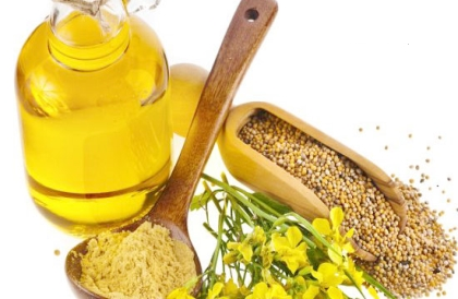 Rapeseed oil machine