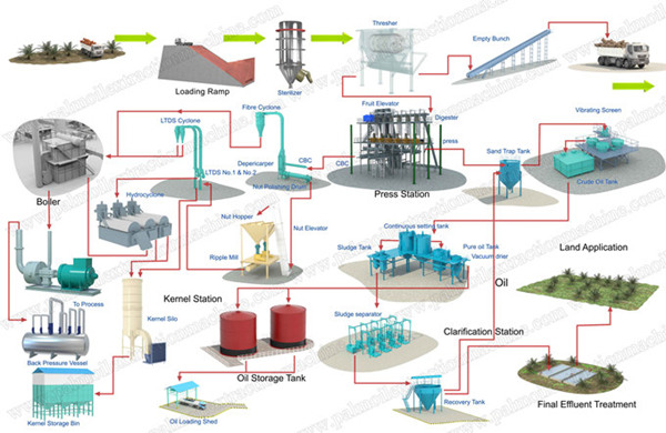 Palm Oil Processing Flow Chartindustry News