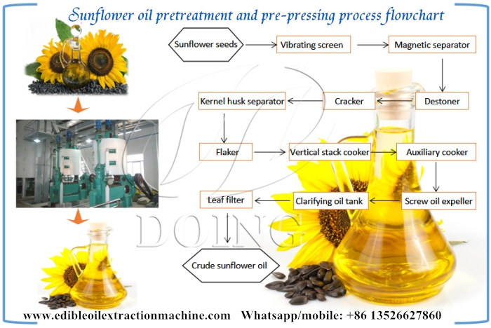 sunflower oil pretreatment and pre-pressing process