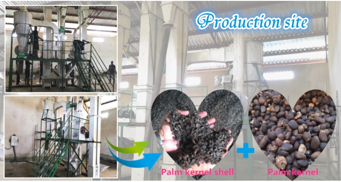 palm nut kernel cracker and separator machine