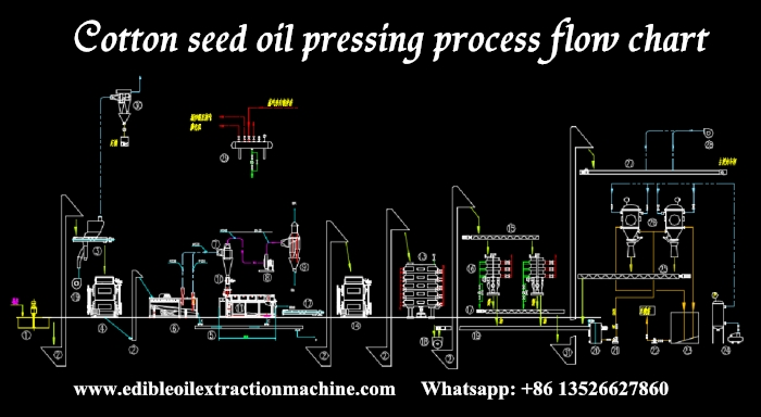 cotton seed oil press production line