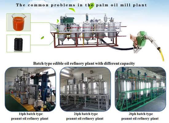 2tph edible oil refining machine introduction