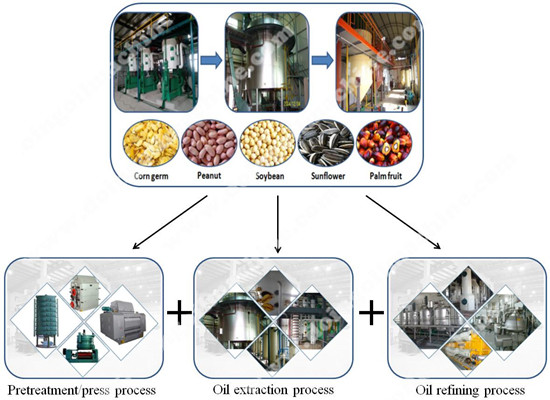Edible oil production in India