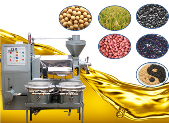 Integrated peanut oil press machine with filter