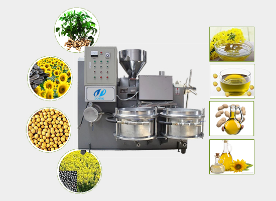 Integrated rapeseed oil press machine with filter