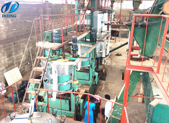 60tpd palm kernel oil mill project in Ondo,Nigeria