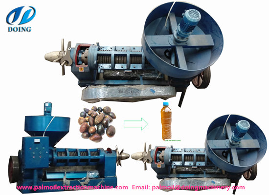 What equipments are needed in palm kernel oil production process?