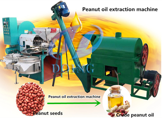 Mini peanut oil mill plant