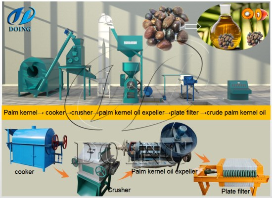 How to make palm kernel oil by using palm kernel oil processing machine?