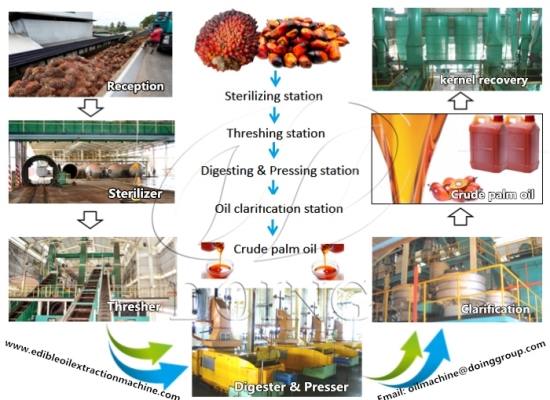 Palm oil processing machines and their prices