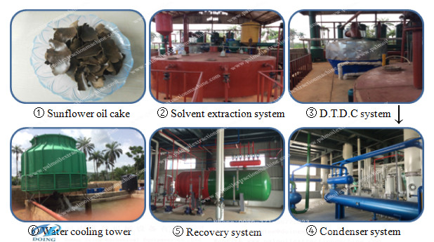 corn germ oil solvent extraction machine