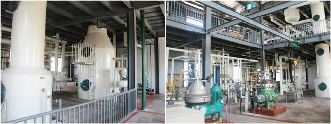 palm kernel oil deodorization machine
