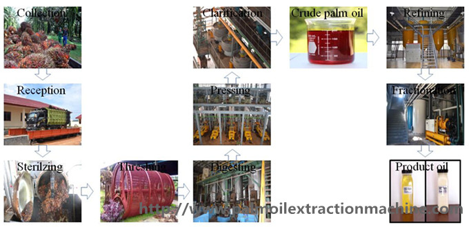 60tph palm oil processing machine
