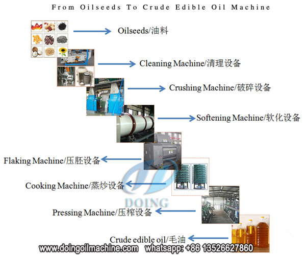 cottonseed oil pretreatment and prepressing machine