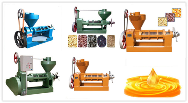 peanutoil making machine