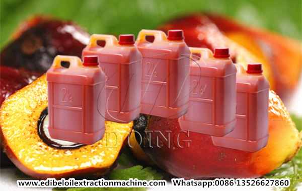 palm oil processing steps