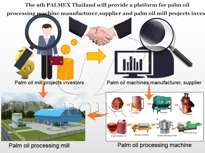 palm oil extraction machine manufacturer