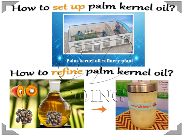 palm kernle oil refinery plant