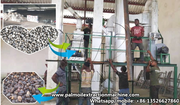 palm kernel nut cracker and separator machine