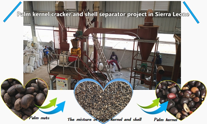 palm kernel cracking and sepating machine